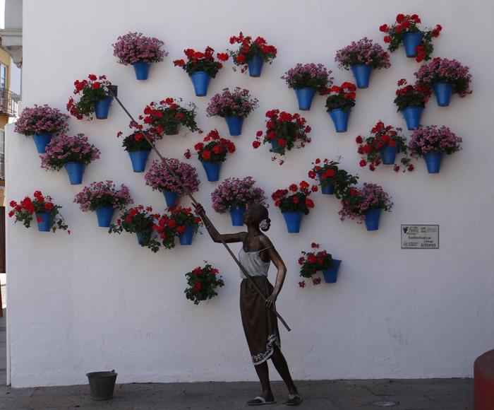 pot planten aan de muur