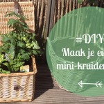 #DIY: Mini Groente en kruidentuin