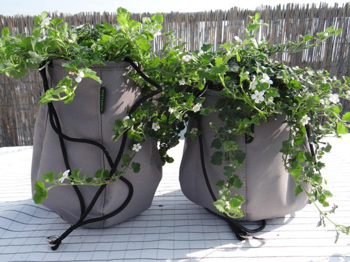 Velda Waterbags - Van hangplant tot minivijvertje