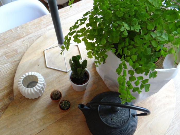 groen en planten in huis