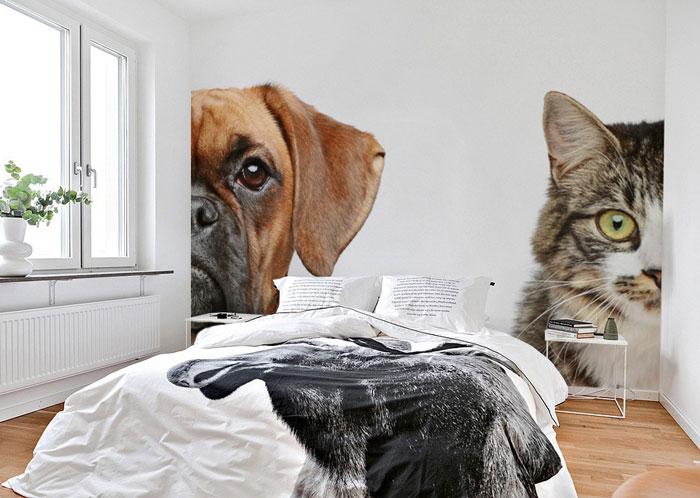 fotobehang hond poes