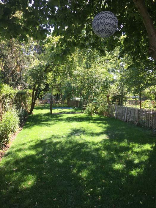 gras geled in de achtertuin