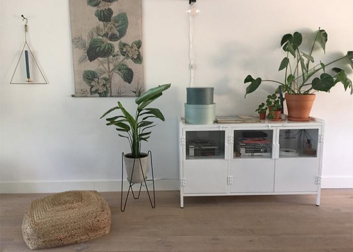 kamerplanten in huis